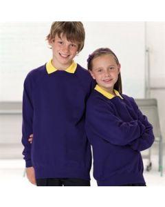 Russell Kids Raglan Sleeve Sweatshirt